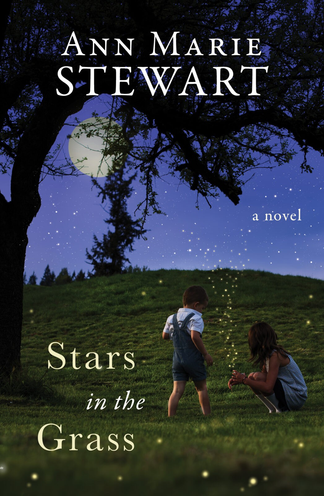 Welcome, author Ann Stewart